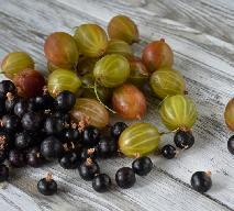 Sok pitny z agrestu i czarnej porzeczki - przepis na sok bogaty w witaminy